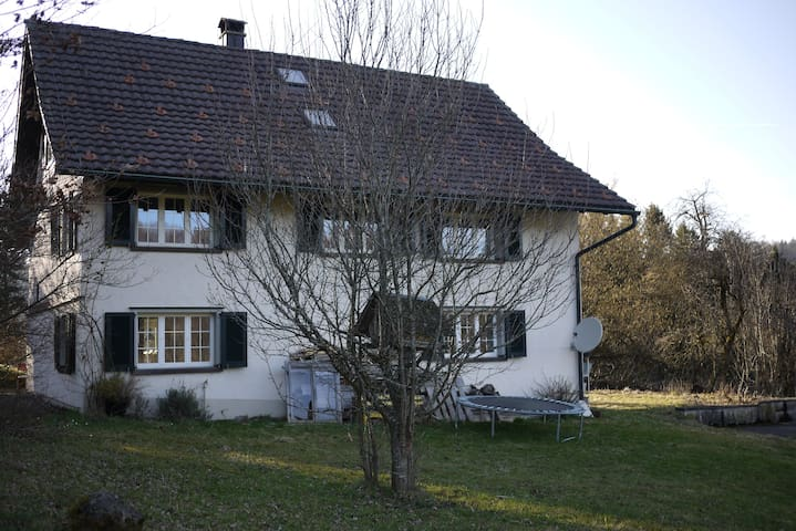 Grosses Haus mit Charme - Bäretswil - House