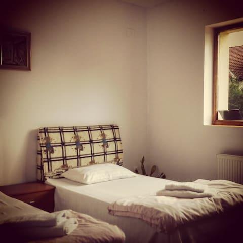 "Pensiunea ""Lis House"" - room 0 (two single beds)"