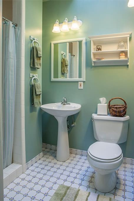 Bathroom with large show and skylight.