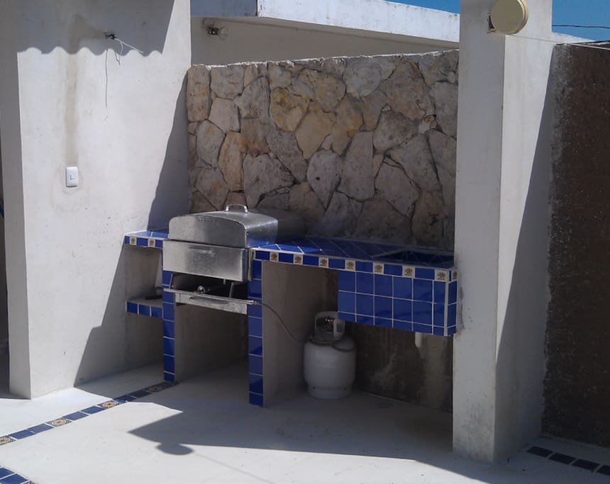 Combined propane/charcoal grill