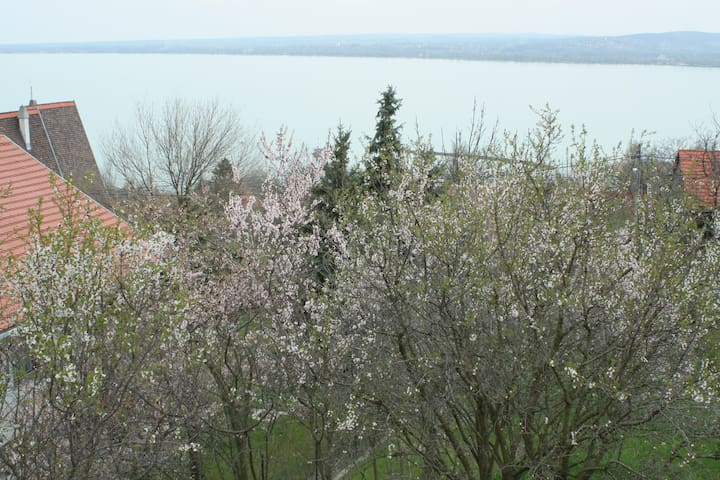 Stunning view at the lake Balaton - Tihany - House