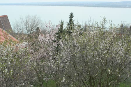 Stunning view at the lake Balaton - Casa