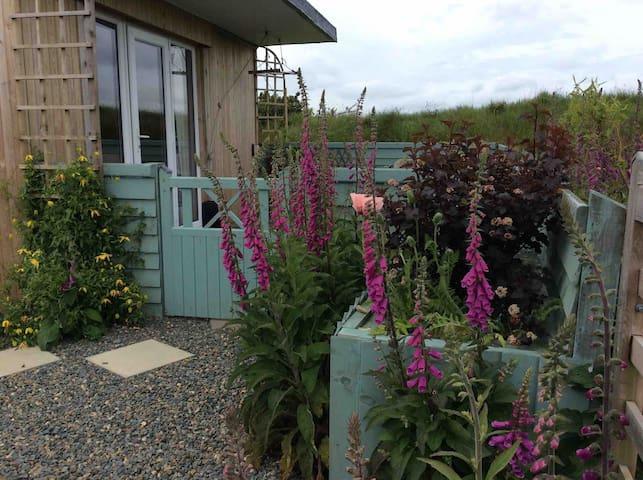 Pembrokeshire - gorgeous cosy hedgerow hut