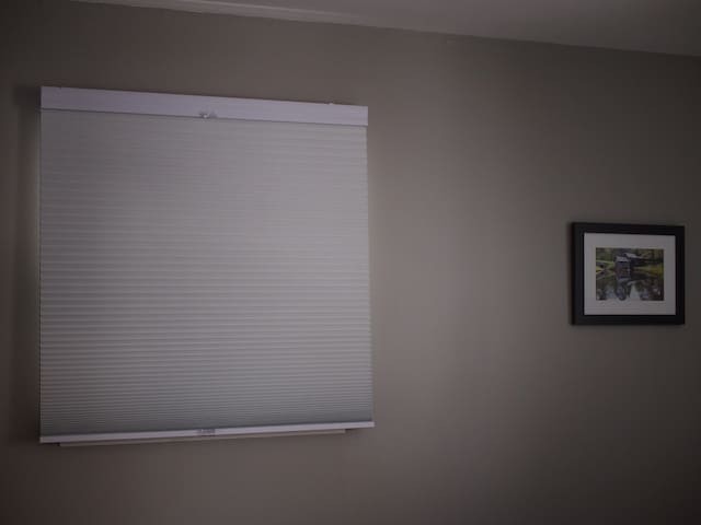 the gray room-- the black out blinds go all the way up or half down from the top or bottom