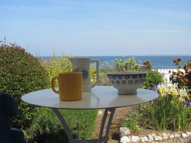 Maison, jardin, vue sur mer