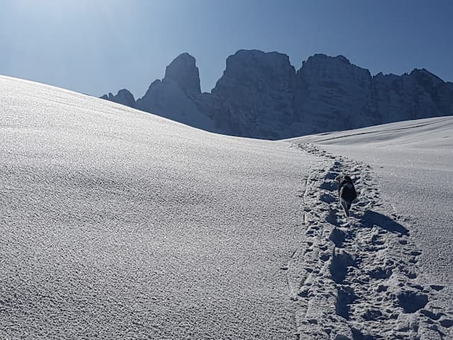 La Suite Comelico Valley - Dolomites of Sesto