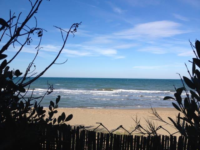 spiaggia vista dal giardino