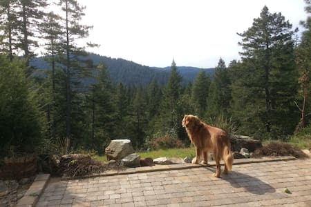 RidgeHaven  Majestic  Redwood forest view....
