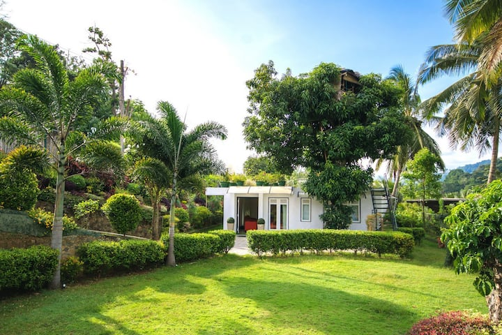 Organic Villa