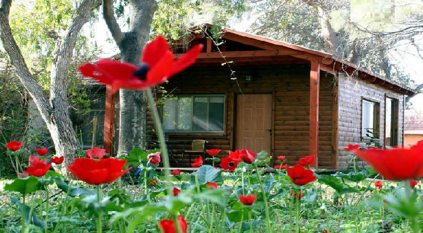 Experience rural  tourism in Israel - Arad - Cabana