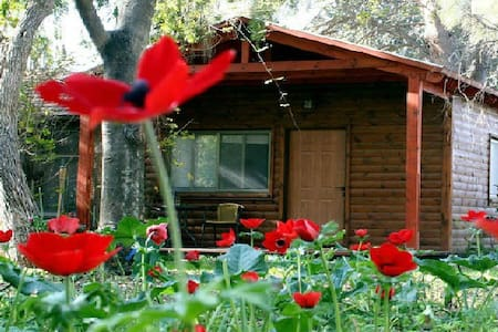 Experience rural  tourism in Israel - Arad
