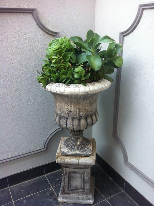 Planter on balcony