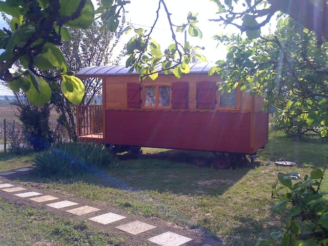 B&B Wooden Caravan in the vineyards - Chérac