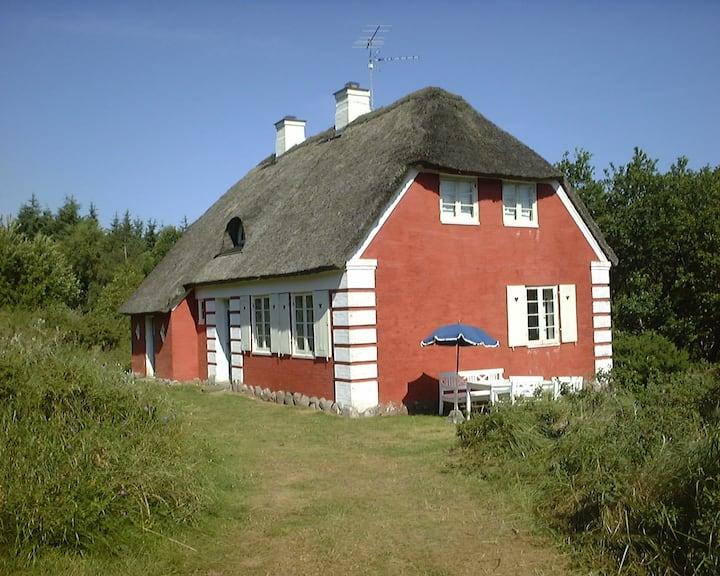Classic Danish summer cottage