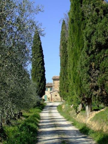Podere Calcinaia Agriturismo - Castelnuovo Berardenga - Apartemen