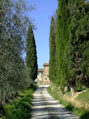 Podere Calcinaia Agriturismo - Castelnuovo Berardenga - Lejlighed