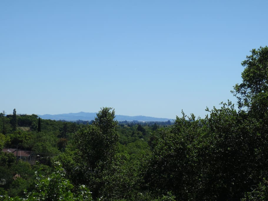View out towards San Pablo Bay