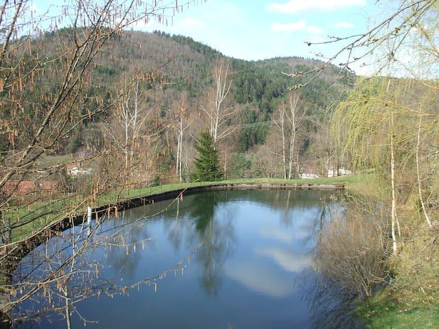 Gîte Julie avec Spa Jacuzzi Sauna, étang de pêche
