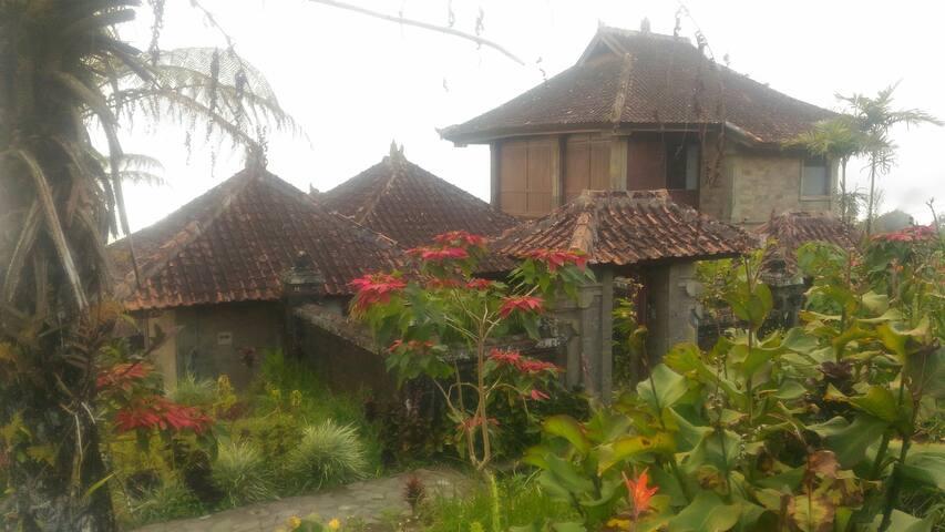 Wanagiri villa
