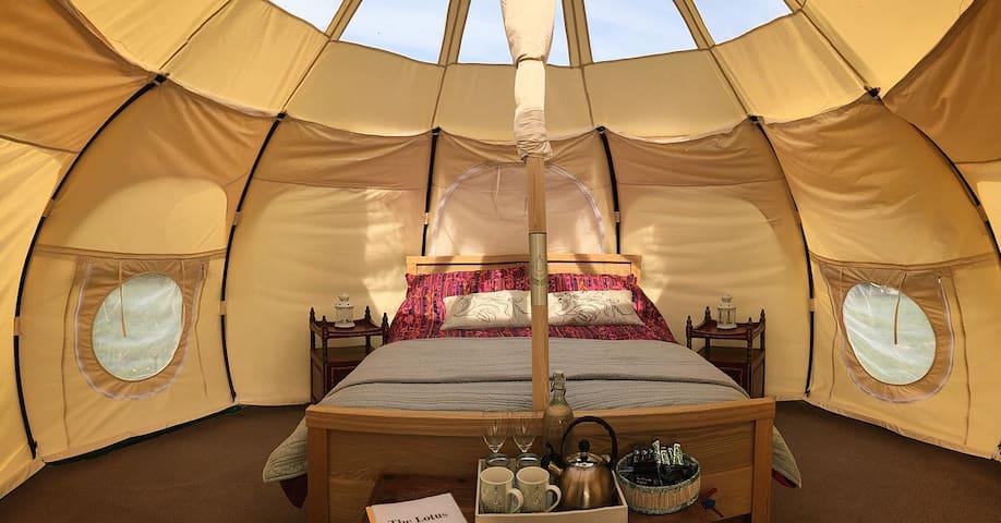 Lotus Belle Stargazer Tent