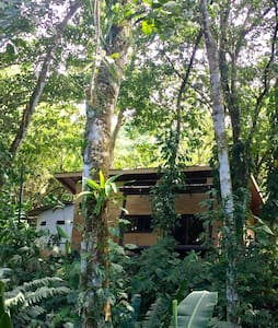 In the jungle, 7 minutes from Uvita - Uvita - House