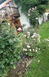 appartement calme dans un ecrin de fleurs