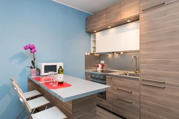 Brand new spacious two room unit downtown Prague!