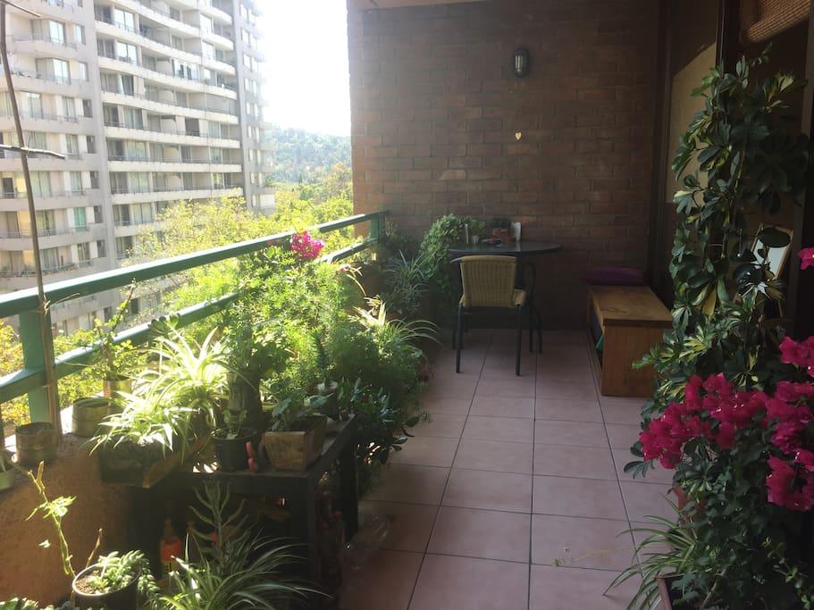 Amplia Terraza con jardín, un refugio en medio de la ciudad...