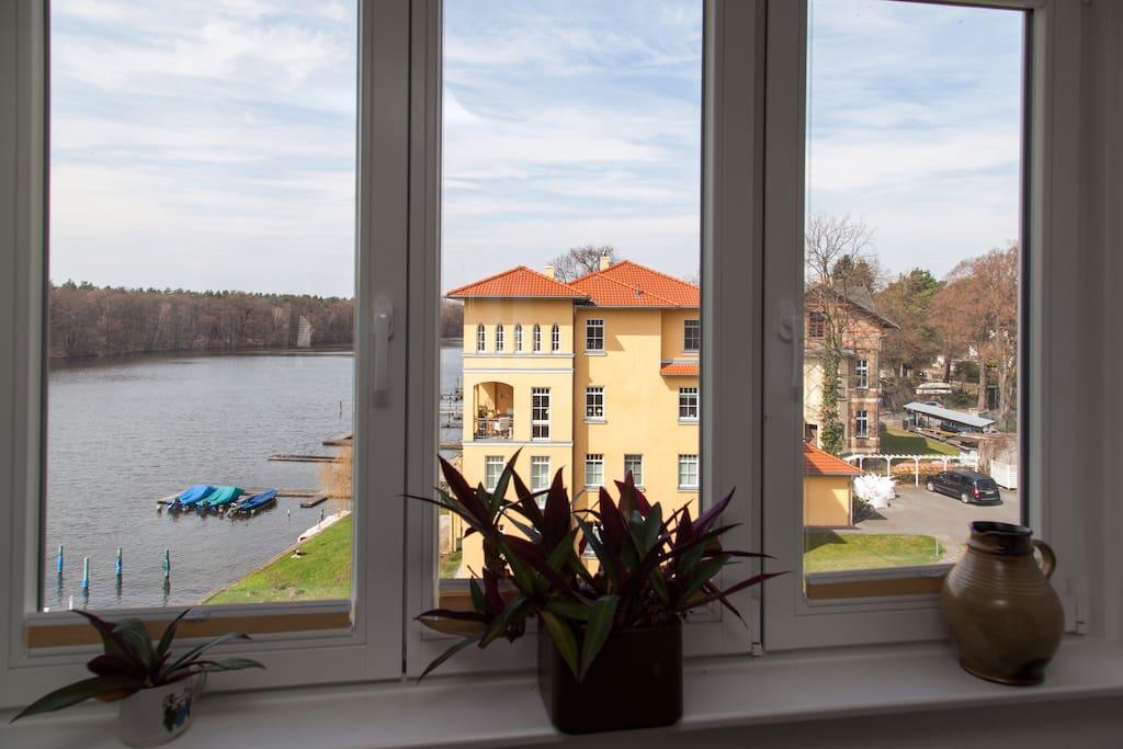 Die Aussicht aus dem Wohnzimmerfenster auf die Müggelspree in Richtung Köpenick