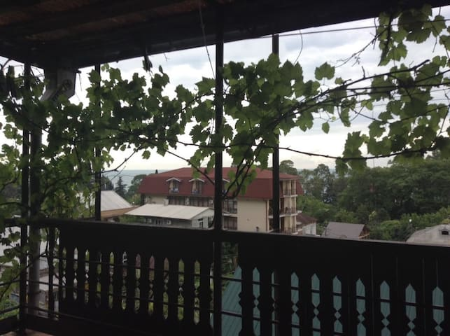 Гагра  приятный отдых в Абхазии
