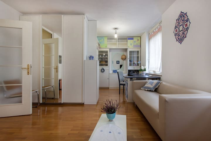 Cute & clean central apartment with parking spot - Ljubljana - Flat