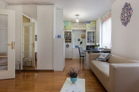 Cute & clean central apartment with parking spot - Ljubljana