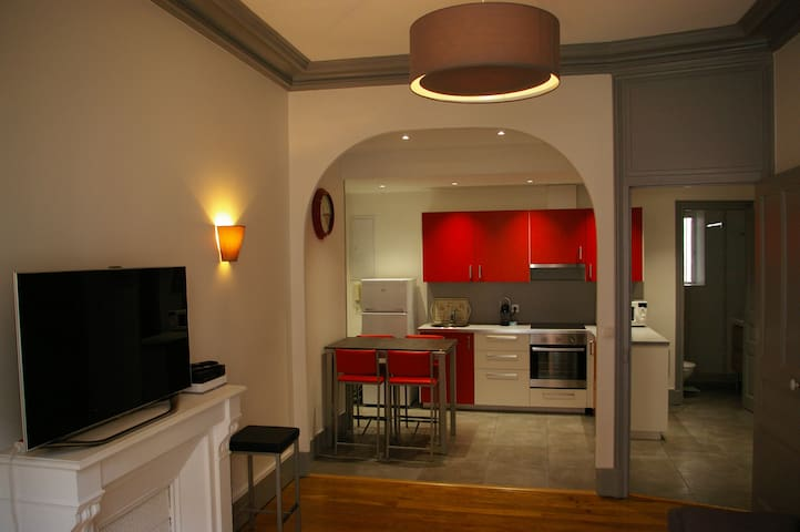 Superb apartment Grenoble center