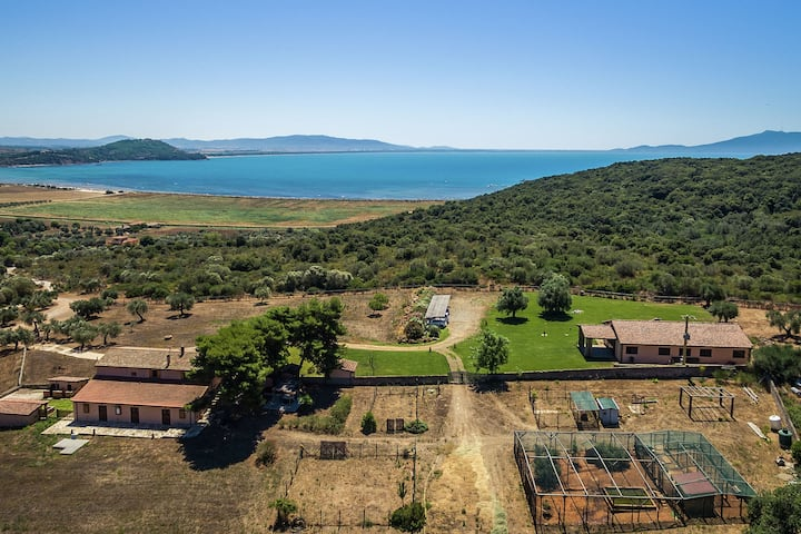 Spacious Holiday Home in Orbetello with Private Terrace