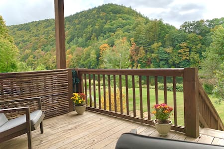 Charming Riverfront Home In Catskill Park