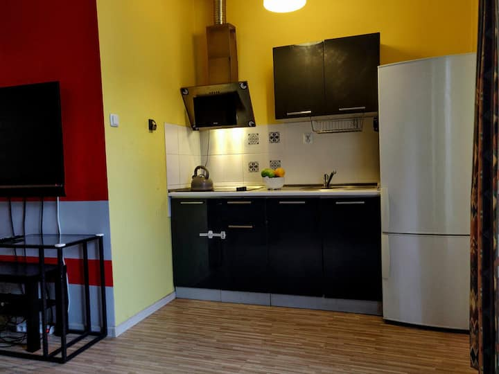Comfortable Apartament (close to COP24)