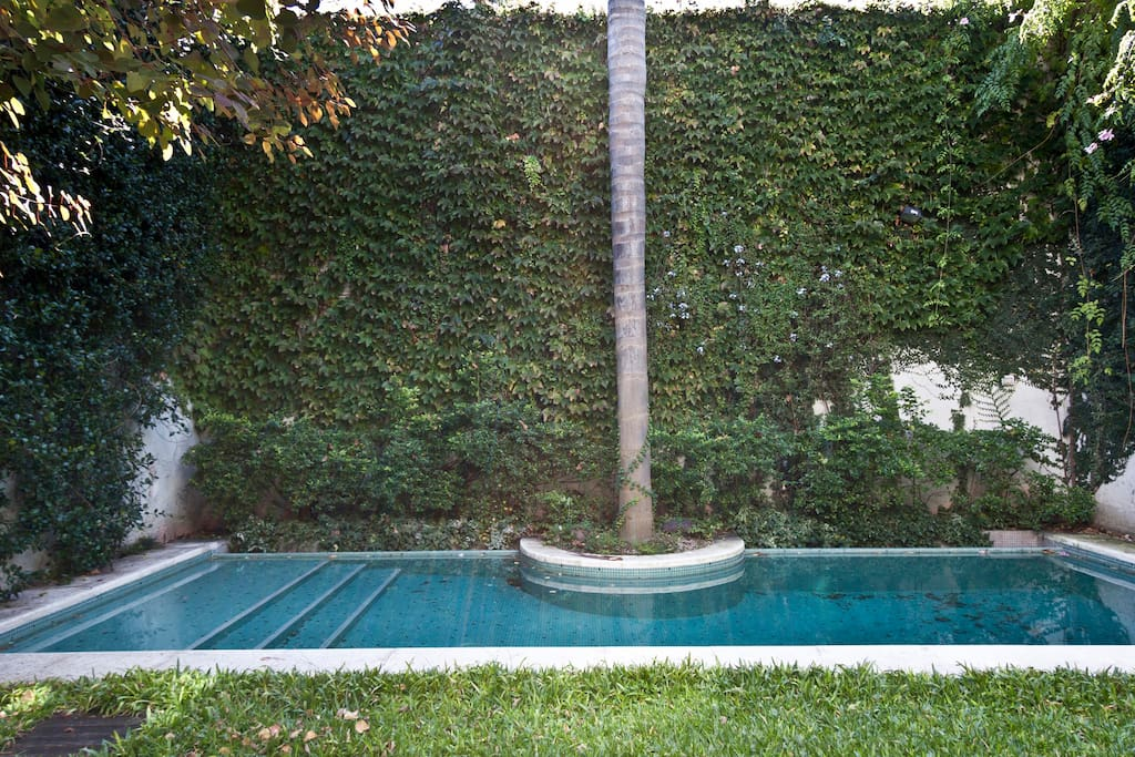Private Pool in the private backyard