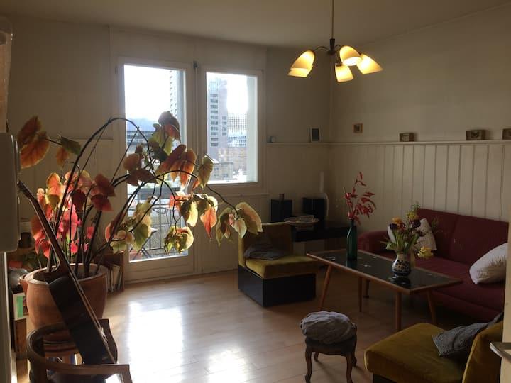 Charming flat in Zurich-Wipkingen with river view