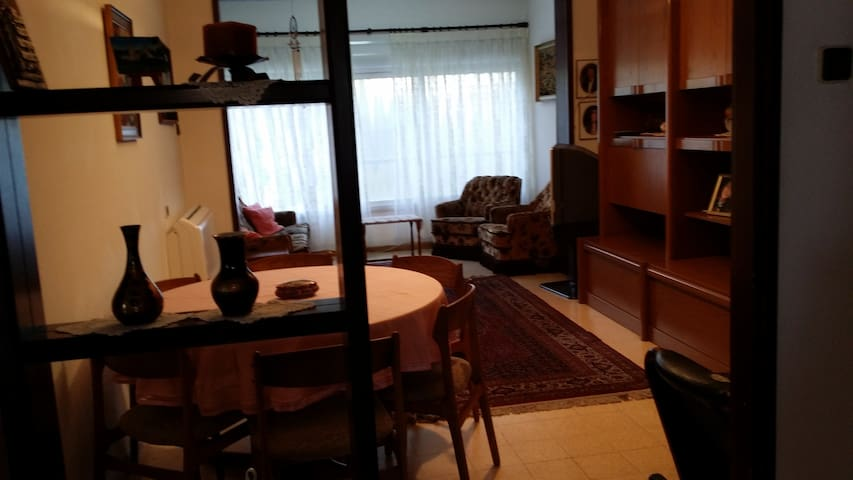 Homey apartment near the Technion - Haifa - Lägenhet