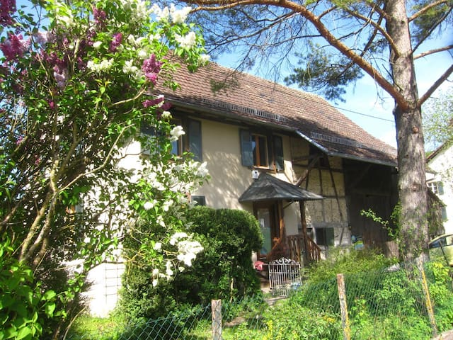 Beautiful Alsatian house - Bendorf - Ev
