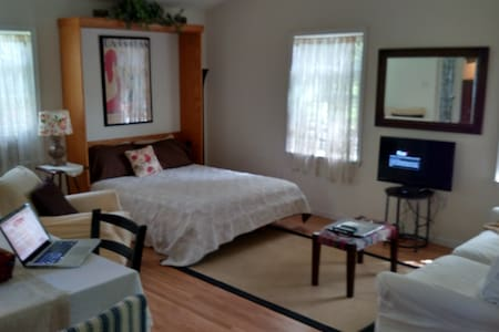 Cozy, Bright Apt in Berwyn Village - Walk to train - Lakás