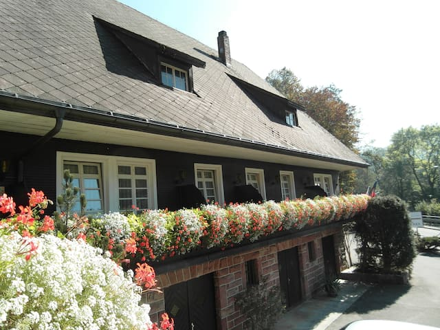 Original Black Forest Hideaway - Oppenau - Bed & Breakfast