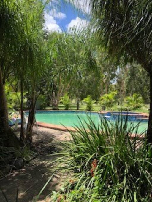 15 metre Pool entrance