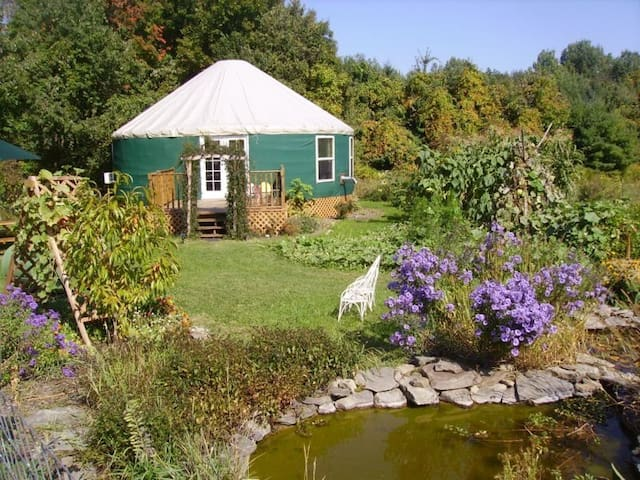 Elegant and Unique Garden Yurt - Newfield - Yurta