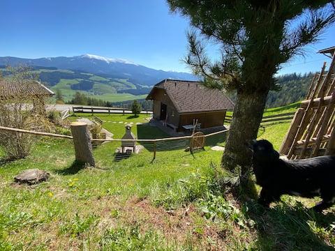 Kalchbauer Hütte im steirischen Zirbenland