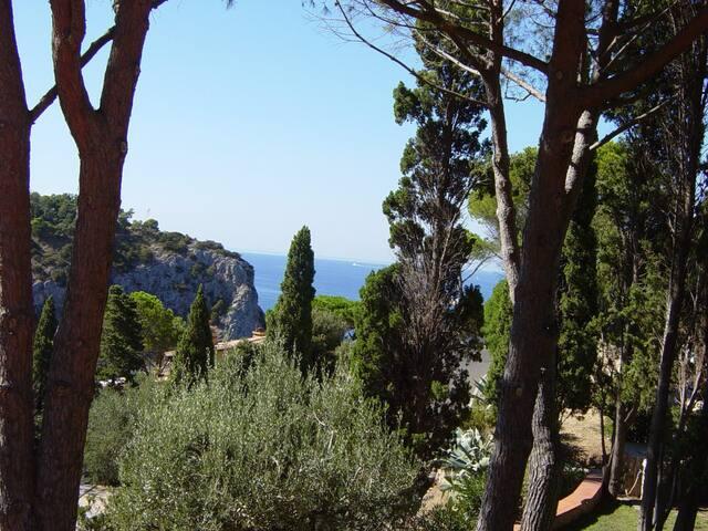 per godersi una vera vacanza di mare - Province of Grosseto - Apartamento