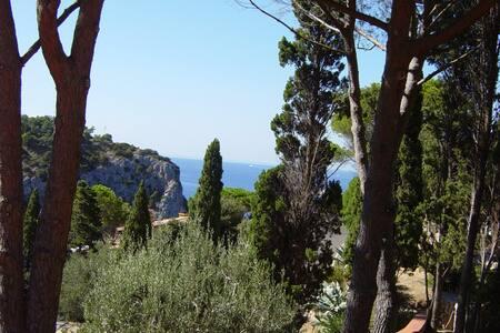 per godersi una vera vacanza di mare - Province of Grosseto