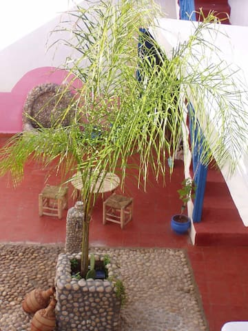 Dar leila - Essaouira - Talo