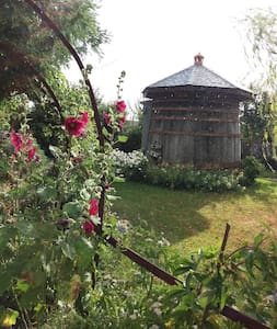 Dormir dans un tonneau géant au fond d'un jardin