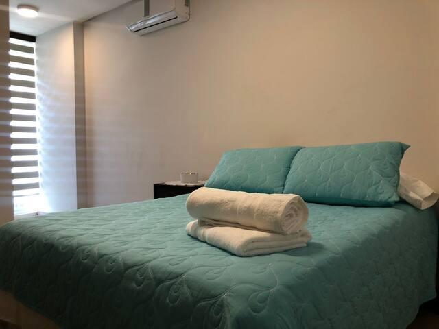 Suit ( Cama Doble, sofá, escritorio, vestidor, balcón, baño privado, televisor, mesa de noche, AC frío/calor)